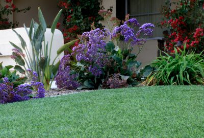 Artificial turf in front of shrubs