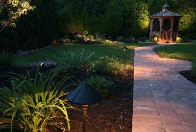 Path being lit by garden lights