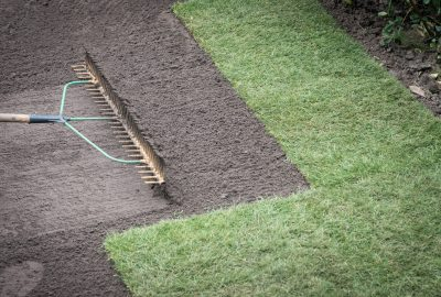 Lawn being raked