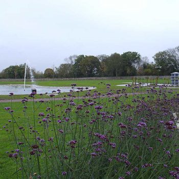 Crematorium Brentwood landscape with lake and lawn