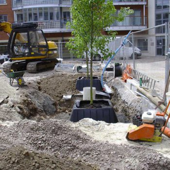 Drivers Yard Capital Square Chelmsford trees being planted