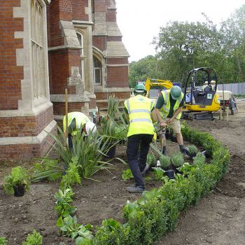Warley Hospital Brentwood shrubs being planted