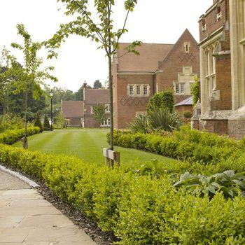 Warley Hospital Brentwood front lawn with shrubbery